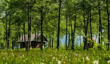 Cabanele de lemn, adevarate pretexte in cautarea tacerii absolute…