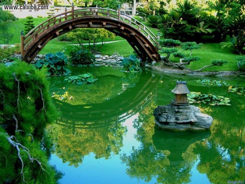 Pod in gradina japoneza