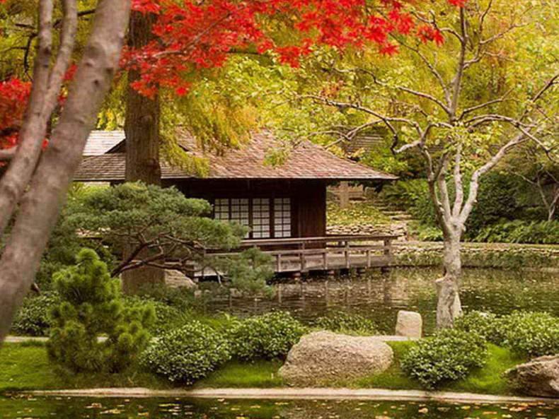 Gradini Japoneze cu cabana pe lac
