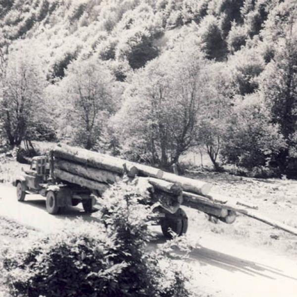 Transport rutier de masa lemnoasa inainte de '89