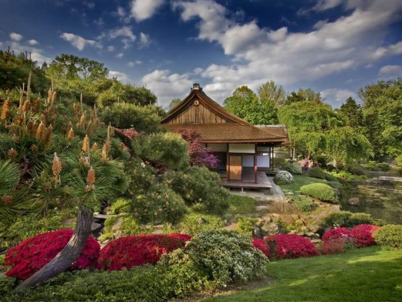 Tea Garden Gradini Japoneze