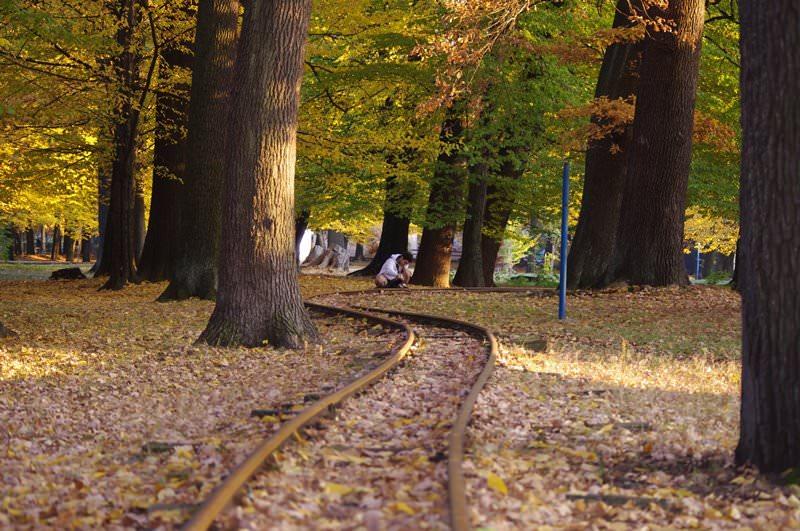 Trenuletul pentru copii din Parcul Central din Baia Mare