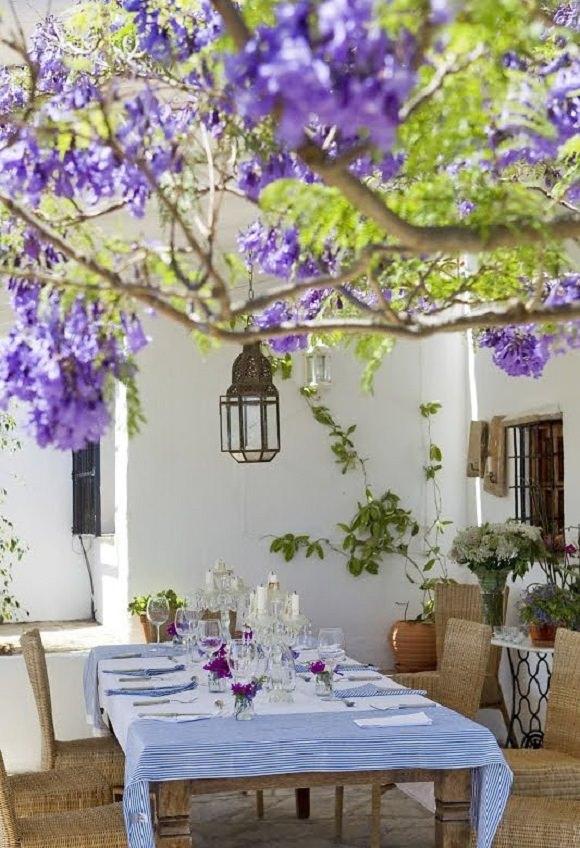 design interior spaniol