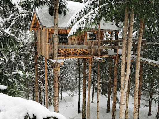case de lemn in padure Casuta din povestea muntelui