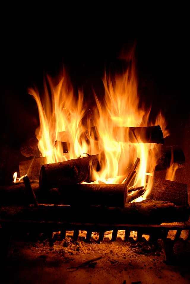 lemne pe foc
