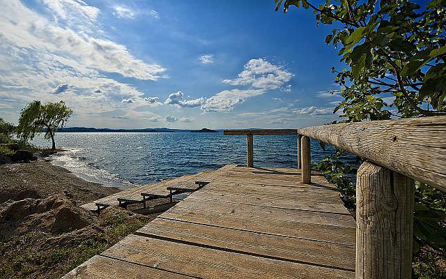 podea de lemn Lemnul in viata de zi cu zi