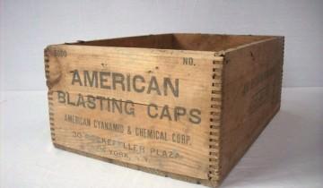 Cutie pentru capse