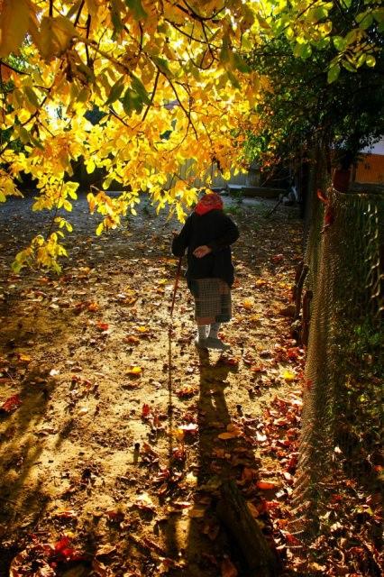 melancolie - satul romanesc
