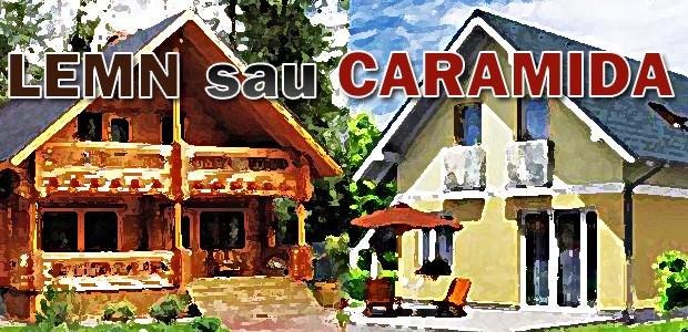 casa de lemn sau casa de caramida
