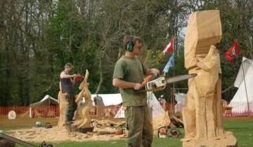 Sculptura lemnului cu drujba