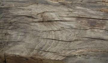 Fibra rustică a lemnului de stejar