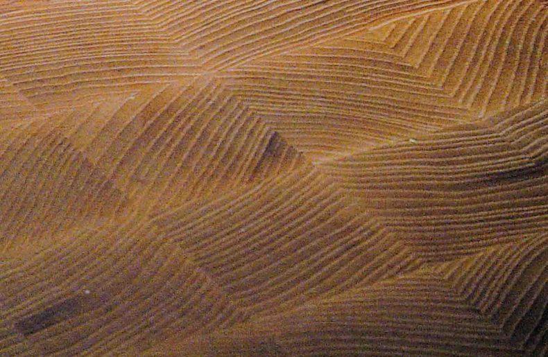 detaliu de fibra - blaturi de masa End Grain