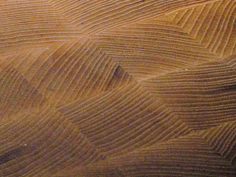 detaliu de fibra