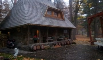 Casa de lemn din Parcul Municipal din Baia Mare