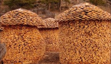 Fără comentarii Nr. 59 | Stive de lemne de foc … și nu doar atât