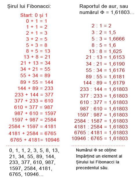 serie Fibonacci si numarul de aur