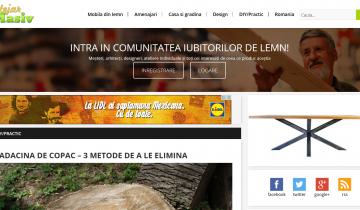 Îndrumar de folosire a blogului www.stejarmasiv.ro