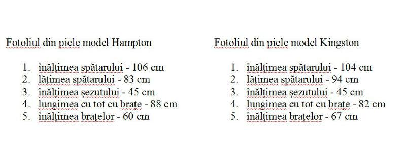 dimensiuni fotolii din piele