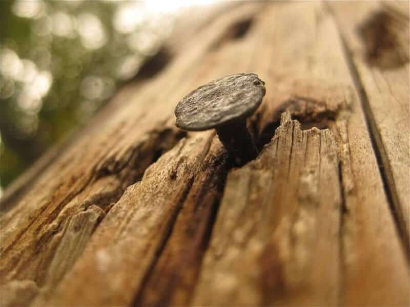 cuie vechi si lemn