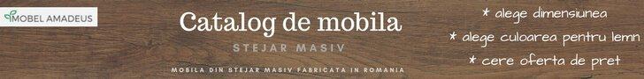 Catalog Mobila