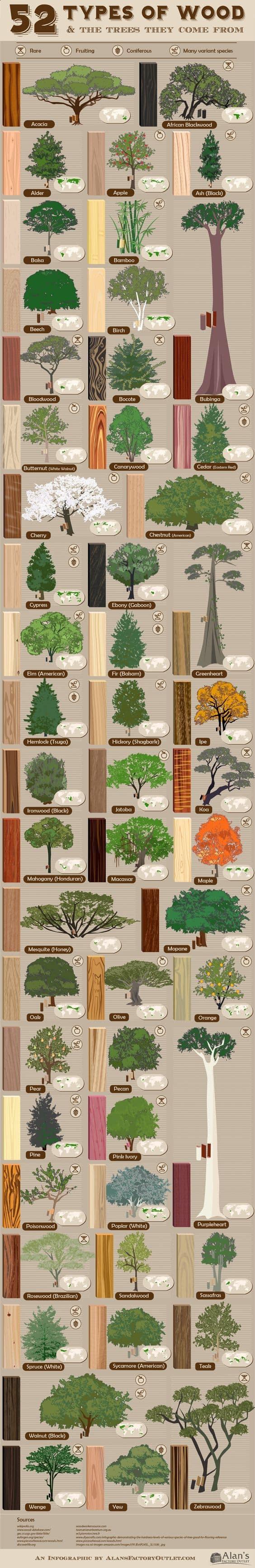 principalele specii de lemn
