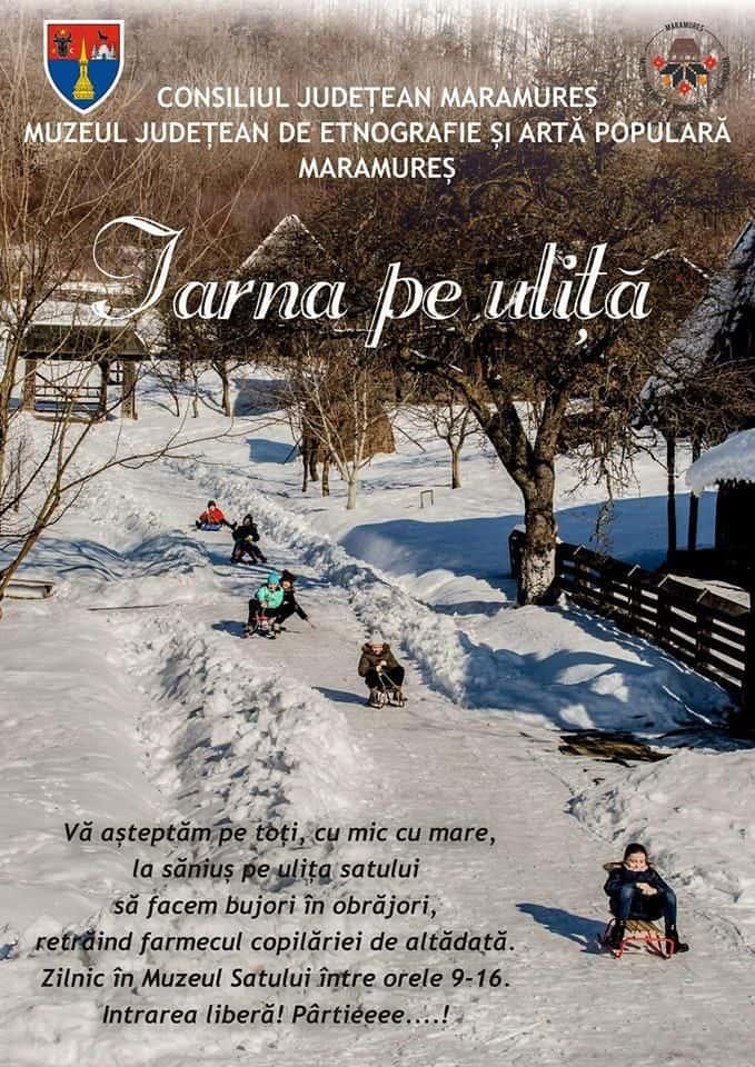 partie de sanie pentru copii la Muzeul Satului din Baia Mare