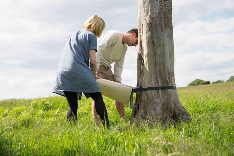 CanopyStair trepte aplicate pe copac