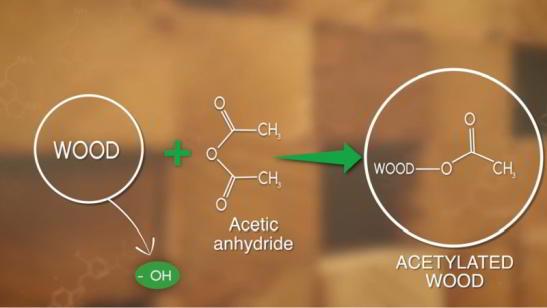 chimia accoya acetilarea lemnului