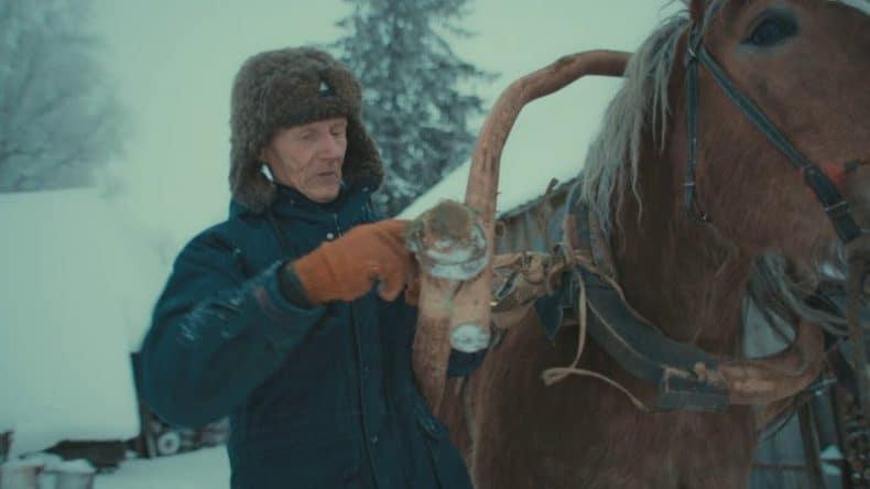 cu calul iarna