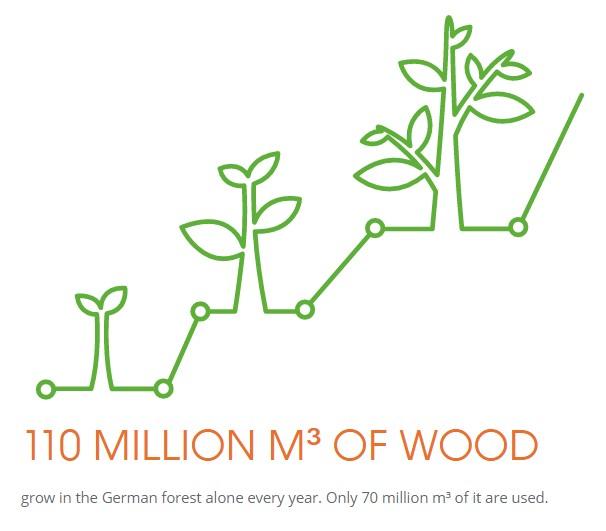 lemnul pentru casa